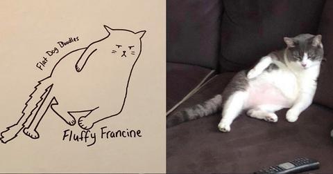 18-flat-dog-doodles-1567790740987.jpg