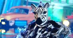 The Zebra on 'The Masked Dancer'
