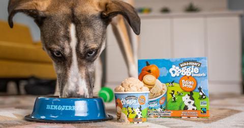 ben-jerrys-ice-cream-dogs-1610485631132.jpg