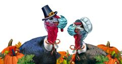 thanksgiving knock knock jokes