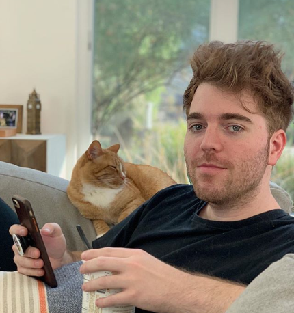 what-did-shane-dawson-say-about-his-cat-4-1552922595496.png