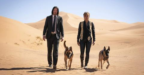 john-wick-3-does-dog-die-1568222842112.jpg