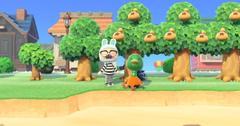 do money trees regrow acnh