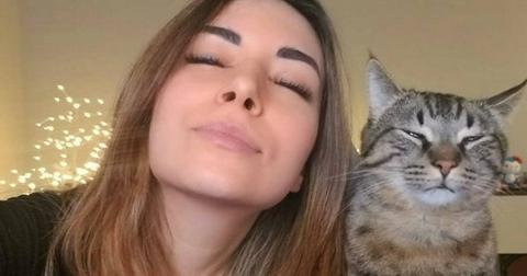 alinity-ban-animal-abuse-1564693809692.jpg
