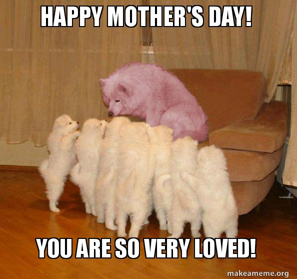happy-dog-mom-day-meme-7-1557500391816.png