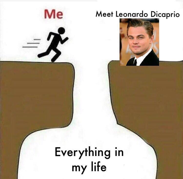 leonardo-dicaprio-memes-6-1573246311219.jpg