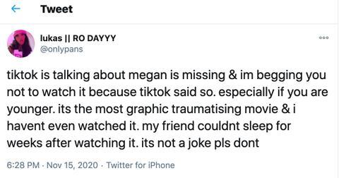 is-megan-is-missing-real-1-1605465081167.jpg