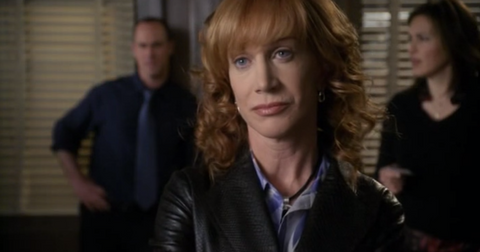 best-svu-guest-stars-cameos-11-1579210995965.png