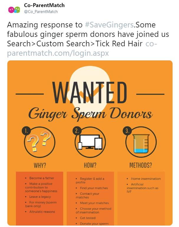 save-gingers-2-1547140907543.jpg