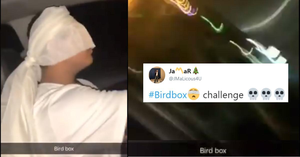 birdbox-challenge-cover-5-1546535890956.jpg