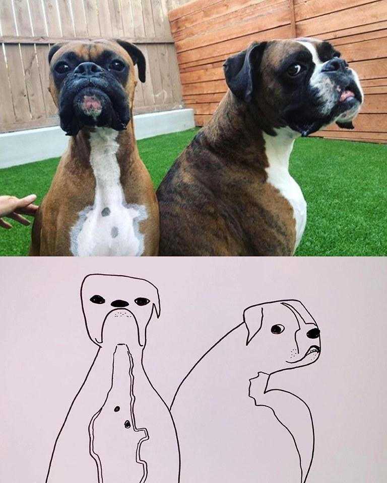 14-flat-dog-doodles-1567790696983.jpg