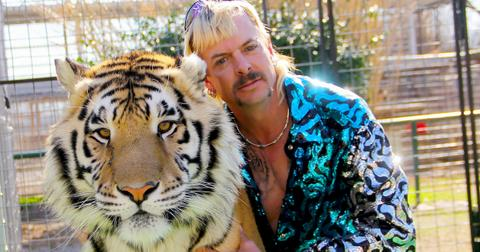 what happened to joe exotic cats