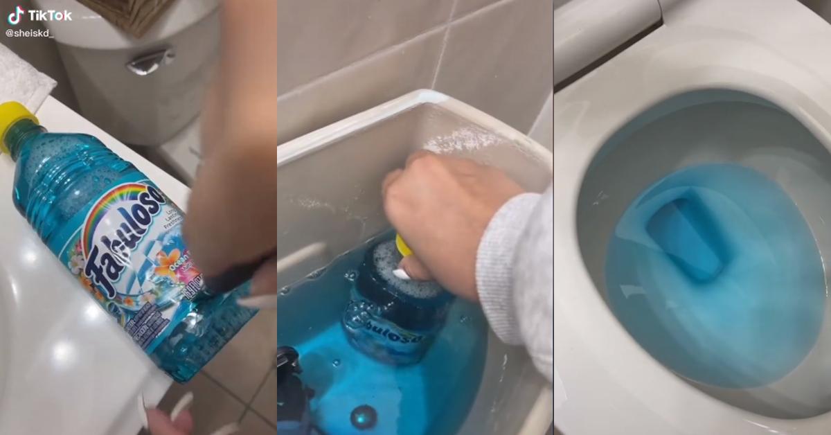 tiktok toilet hack