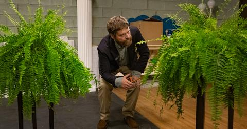 is-between-two-ferns-staged-2-1568929538440.jpg