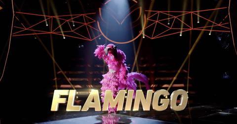 flamingo-masked-singer-spoilers-1568660575354.jpg