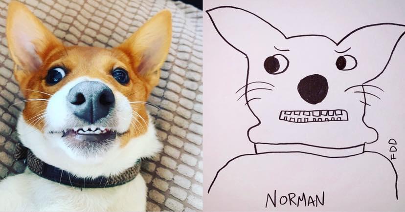 13-flat-dog-doodles-1567790685051.jpg