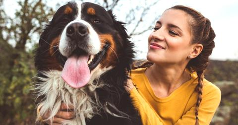 Survey Proves Dog Owners Are Happier Than Cat Owners
