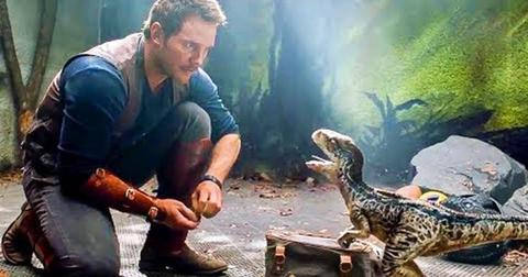 jurassic-world-2-owen-grady-blue-1569425461334.jpg