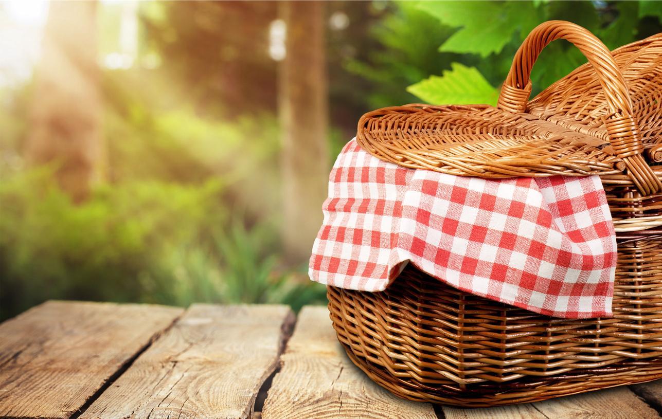 picnic-1539977429739-1539978162312.jpg