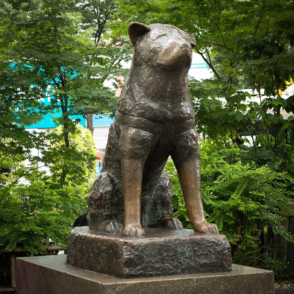 hachiko-statue-1543866301533.jpg
