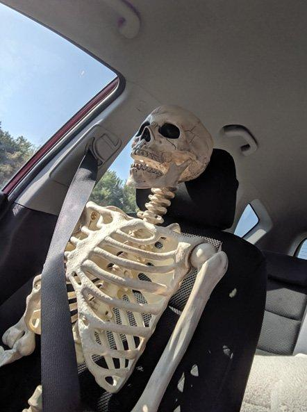 8-skeleton-pet-1570642943139.jpeg