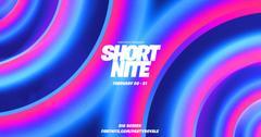 'Fortnite' Short Nite