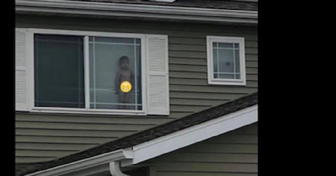 featured-naked-kid-in-window-1581348497054.jpg