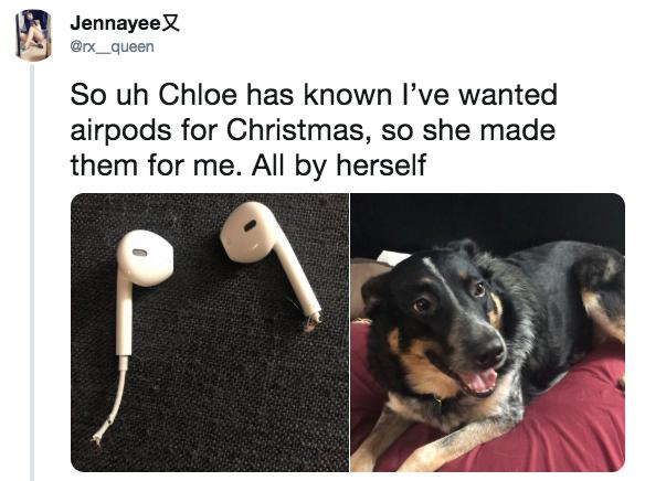 36 AirPods Memes to Show Your Friends Who Won't Shut up