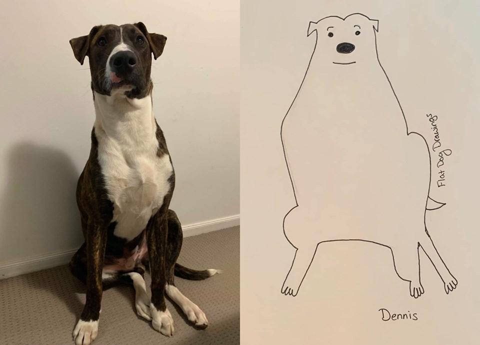 6-flat-dog-doodles-1567790605991.jpg