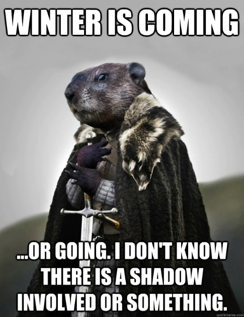 Funny Groundhog Day Memes You Can Laugh at No Matter the Forecast
