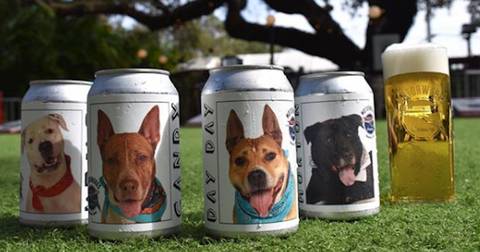 featured-lost-dog-beer-can-1581012695050.jpg