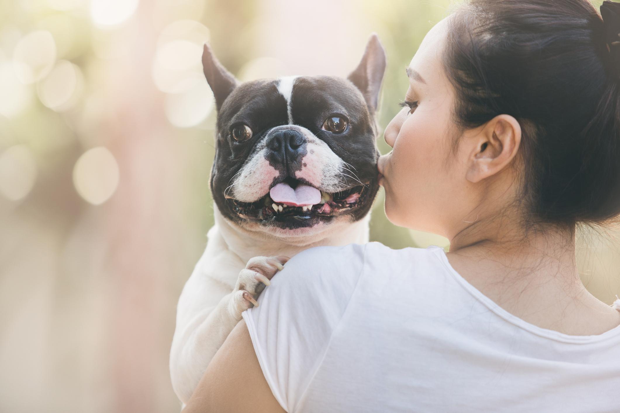 2-kissing-dogs-1563467581511.jpg