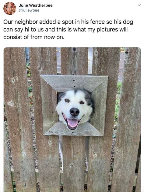 2-wholesome-1568140893927.jpg