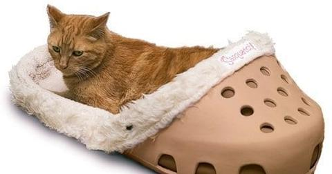 sasquatch-croc-bed-1-1559568414041.jpg