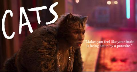 cats-reviews-header-1576780023952.jpg