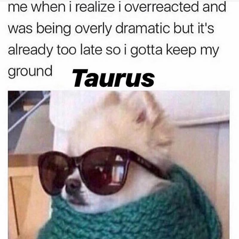 taurus-season-meme-6-1555684355379.jpg