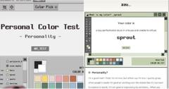Color Personality Test TikTok