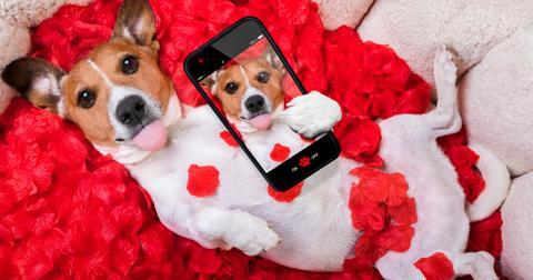 valentines-day-captions-instagram-3-1581106797075.jpg