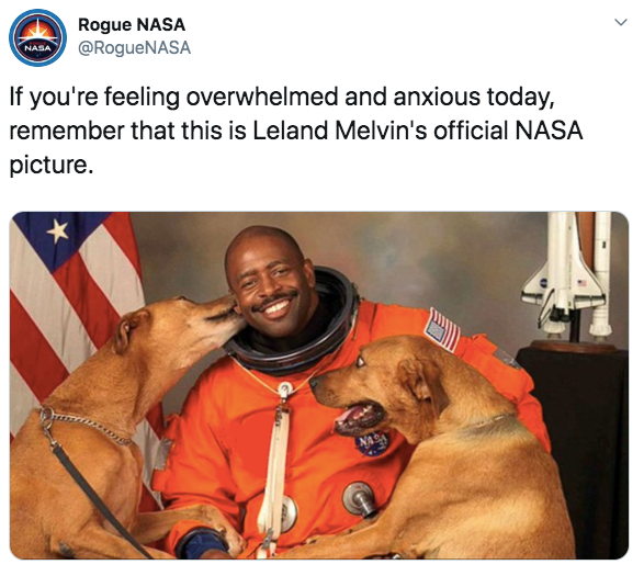 6-wholesome-1568140945627.jpg